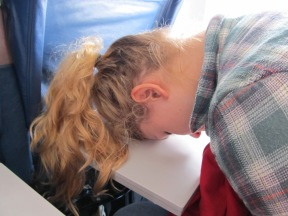 airplane-sleep