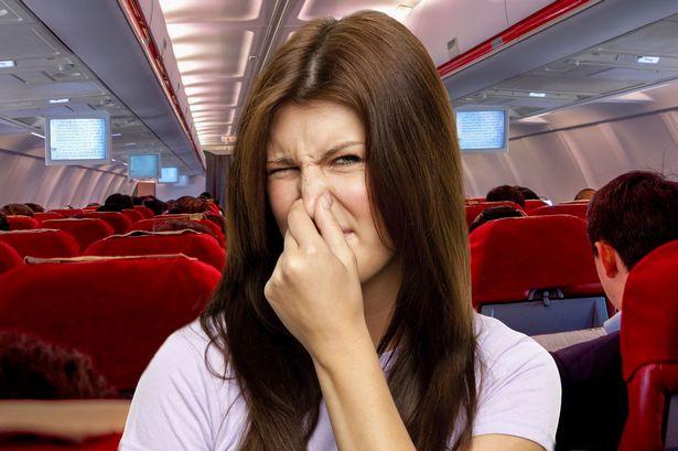 Plane-Smell-Main